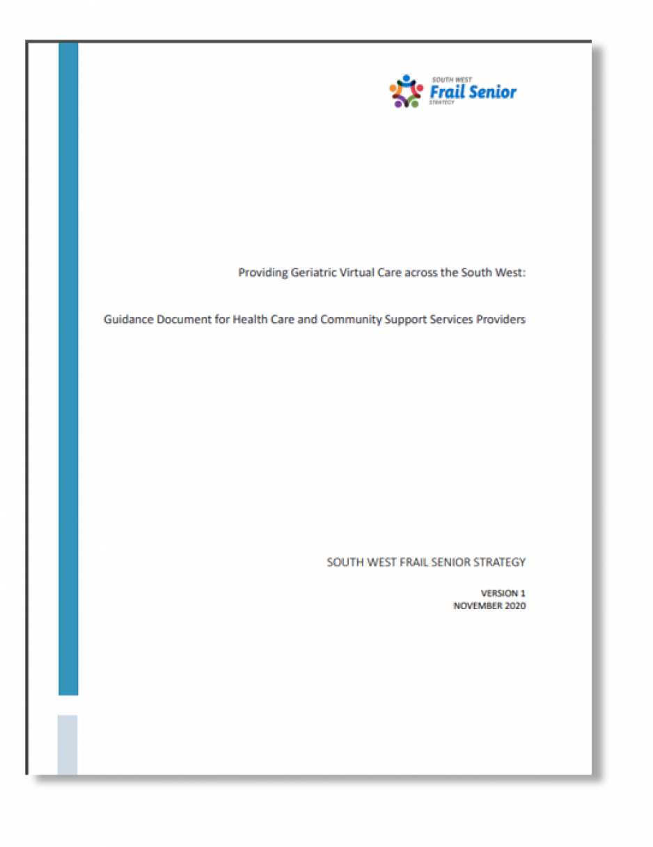 image of virtual care report cover