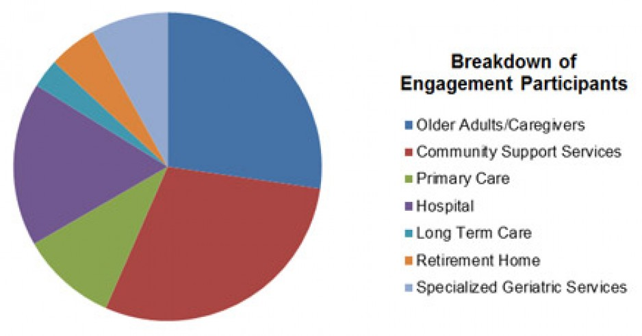 breakdown of frail senior engagement participants